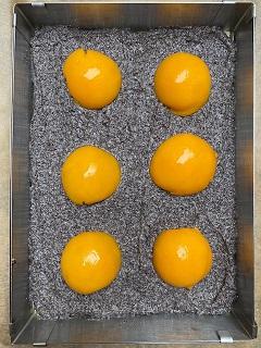 Käsekuchen mit Mohn und Pfirsichen Quark Mohn Pfrsich Mohnkuchen Streusel krimiundkeks
